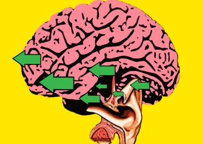 brain-eared
