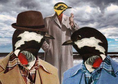 Bird_SceneII